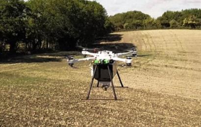Droner kan plante 400.000 mangrovetræer om dagen og målet er meget større