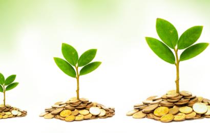 27 gange mere effektivt for klimaet end at spise vegansk og droppe flyvning tilsammen: Bæredygtig investering af din pension