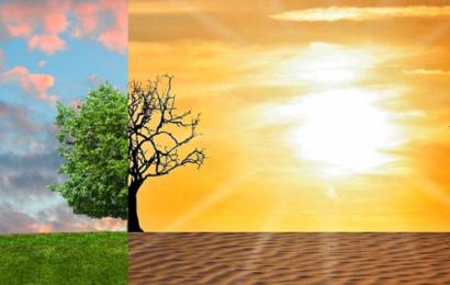 Det kan du selv kan gøre ved klimakrisen: De 6 mest effektive personlige klimatiltag