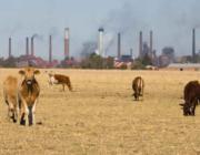 Metan står for 25 % af den globale opvarmning og kan ved kraftig reduktion være den hurtige klimabremse vi har brug