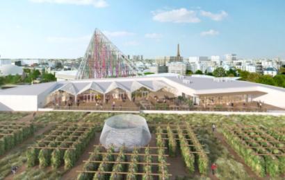 Tagene i Paris viser fremtidens landbrug – og der produceres allerede økologisk mad i tonsvis